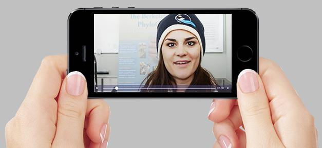 Web video hand